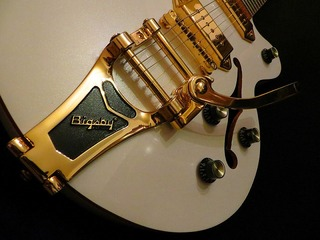 Semi solid body gitaar