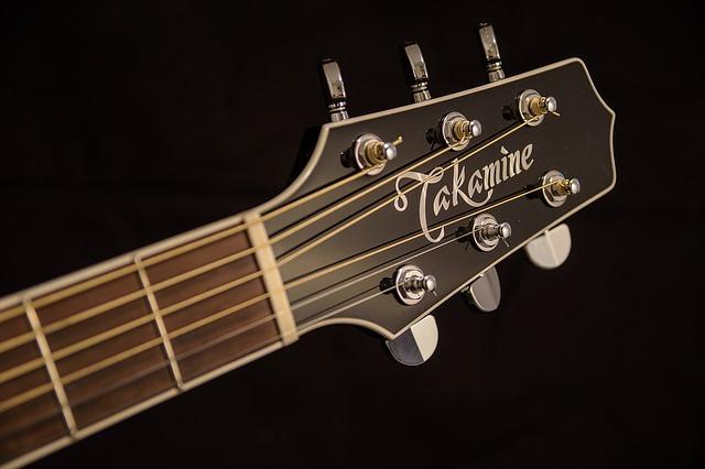 Takamine gitaarmerk